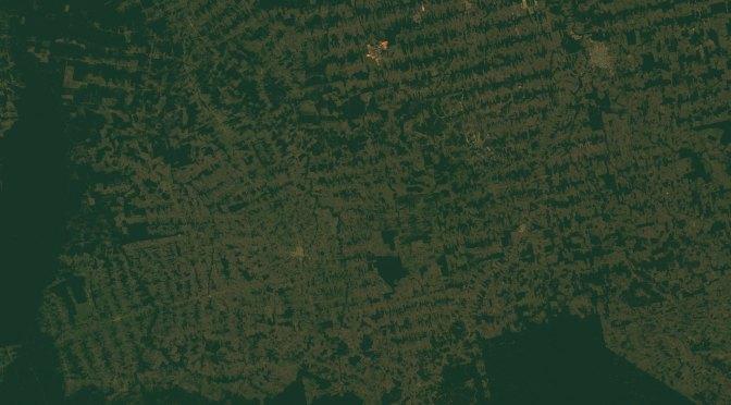 La aceleración de las tasas de deforestación en la Amazonía, que puede ser de un área del tamaño de Londres despejada solo este mes
