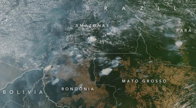 Masiva campaña de noticias falsas apunta a los incendios en la Amazonia brasileña