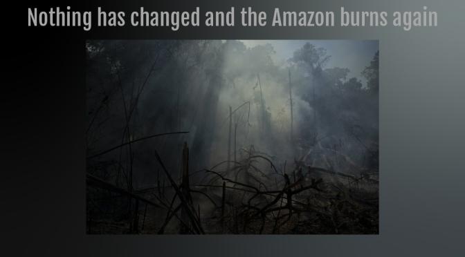 Nada ha cambiado y el Amazonas arde de nuevo