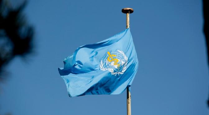 Política y Corrupción en la Organización Mundial de la Salud (OMS)