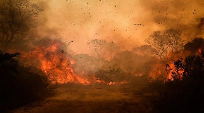 Crece la cortina de humo por la Covid-19 en América Latina