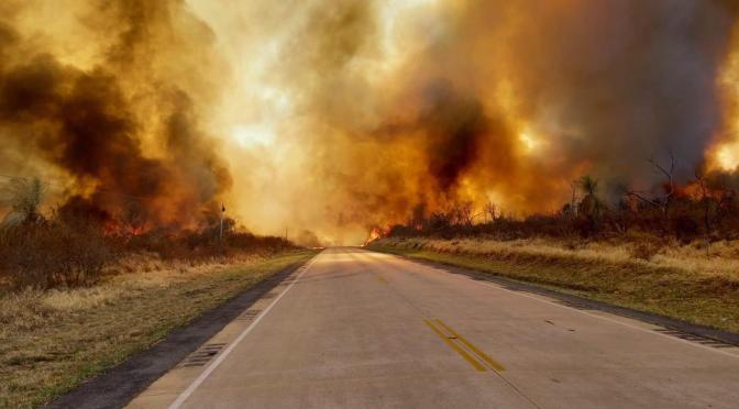 Incendios en la región boliviana de la Chiquitania